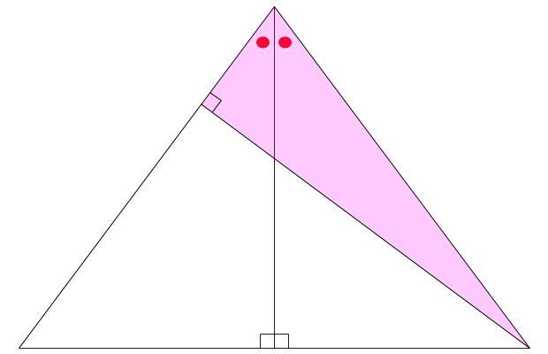 中学受験算数カンガープリント 直角三角形3:4:5 7:24:25 074